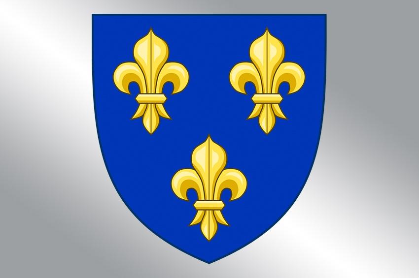 Floarea de crin, un vechi simbol al Franței