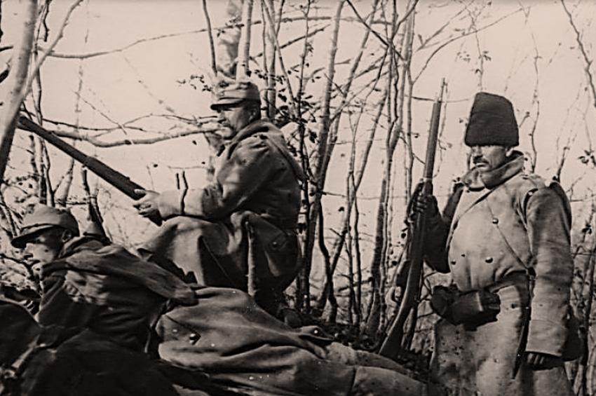 Urmașii pandurilor: partizanii de la Jiu și acțiunile lor din primăvara-vara anului 1917